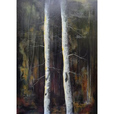 Shadows & Tall Trees