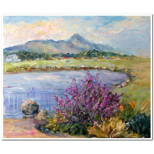 Mayo Mountains