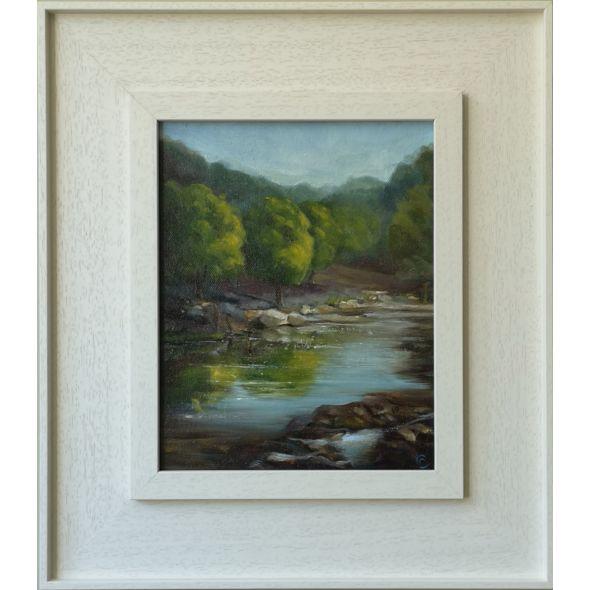 Avonmore River Wicklow