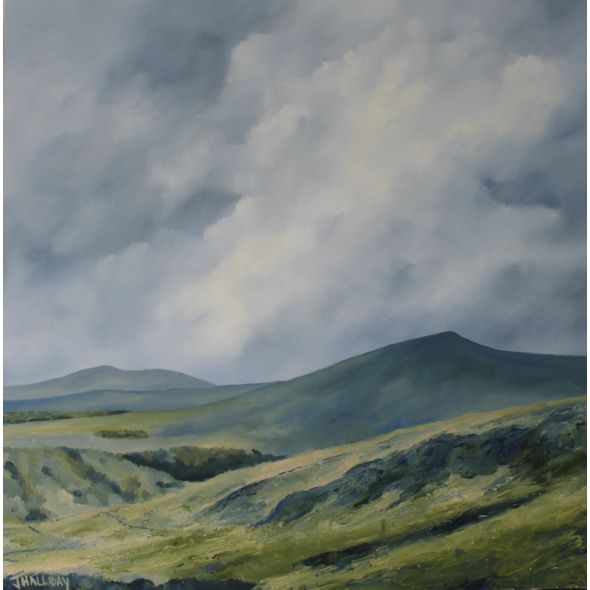 In the Wicklow Mountains, Irish Landscape