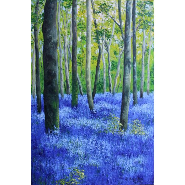 Bluebells in a sunny forest