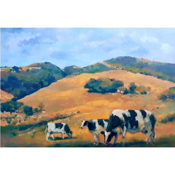Cows on a Sunny Day