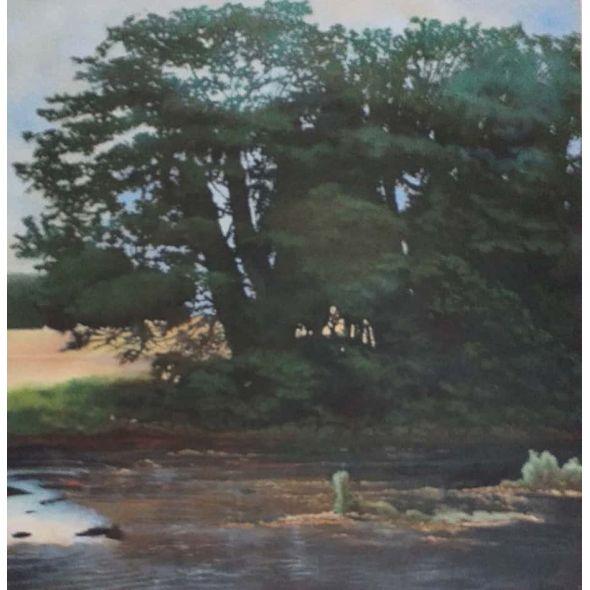 River Roscommon